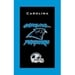 NFL Towel Carolina Panthers